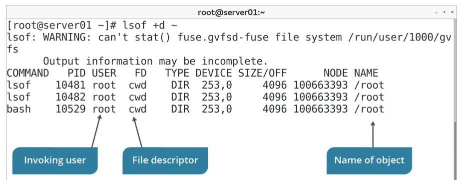 lsof Command Examples in Linux